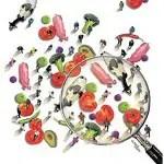 comida_lupa