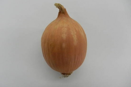 tear-free-onions