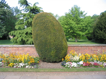 Bush at Jesus College