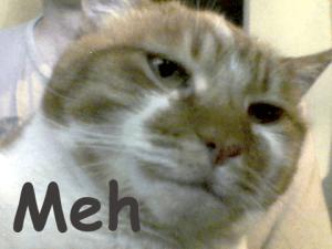 cat-meh