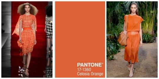 PANTONE CELOSIA ORANGE