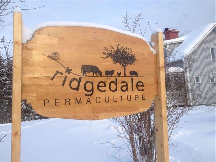 Ridgedale permacultura svezia