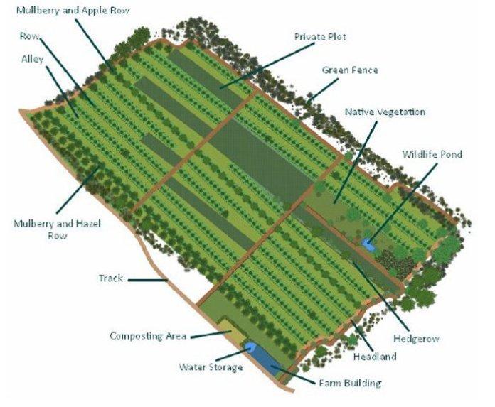 design generale del sito suhi dol