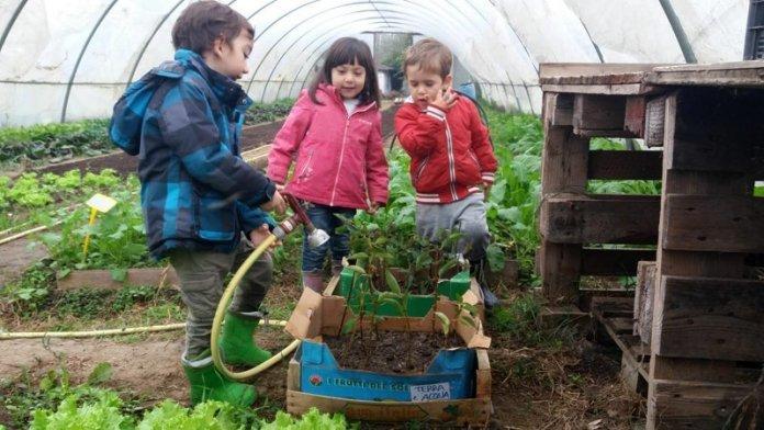Educare in natura corso permacultura