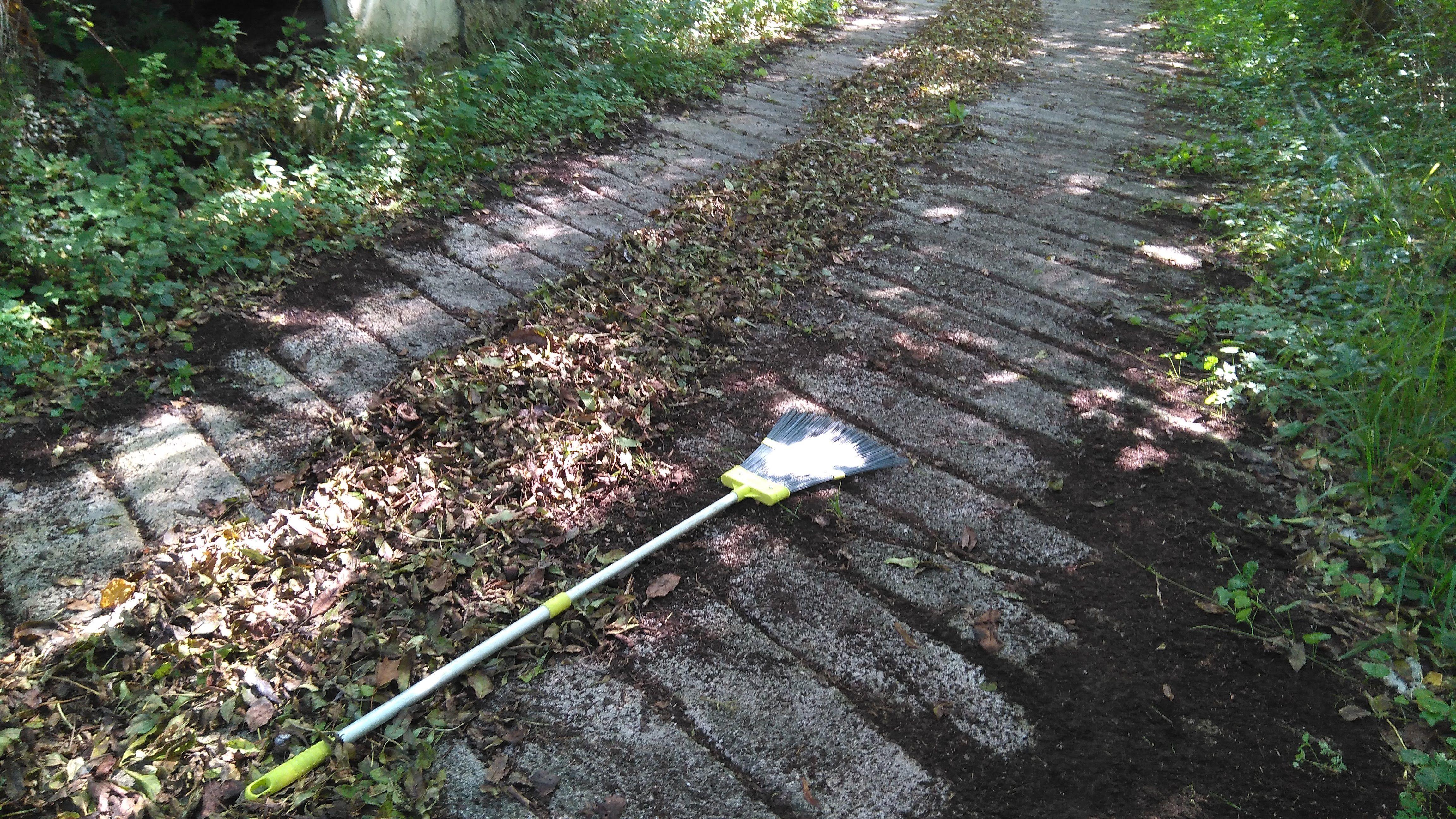 Compost de hojas en camino