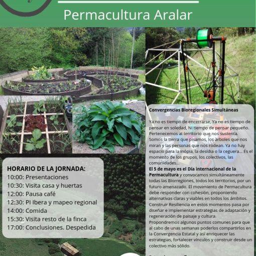 P.Day19 PAralar
