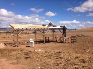 Cocina abierta - Ecosystem restoration Camp