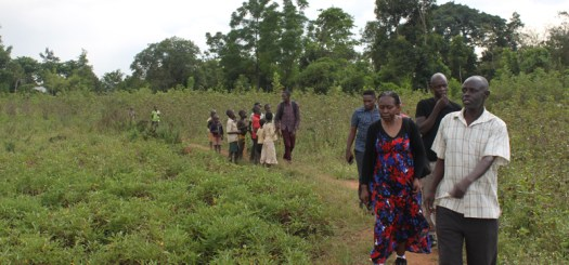 Touring the 6 acre plot at Budumba where we are working to develop one for permaculture training hubs