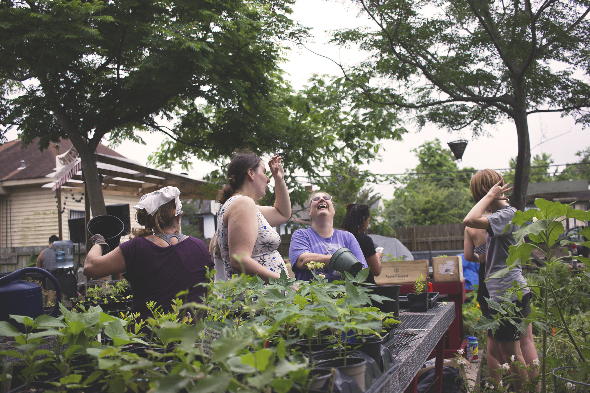 New Orleans Permaculture Action Day