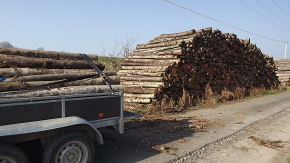 Hout (8)