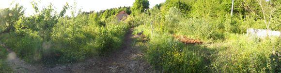 Gospodarstwo rolne 029