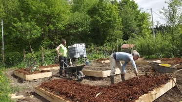 Raised Beds (5)