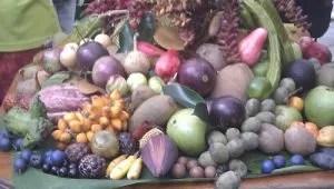 photo taken at australian tropical foods nursery QLD