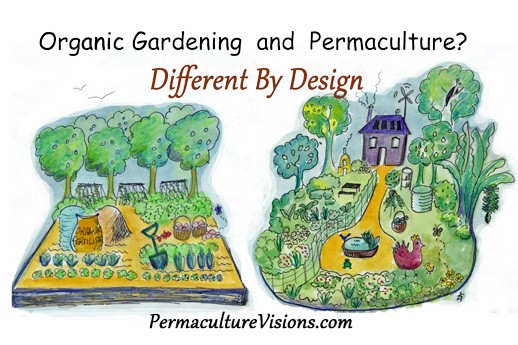 Difference Between Organic Gardening and Permaculture
