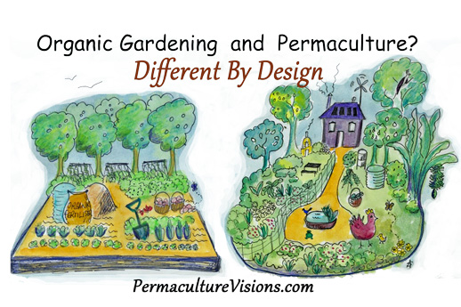Design An Awesome Lifestyle Permaculture Visions Online