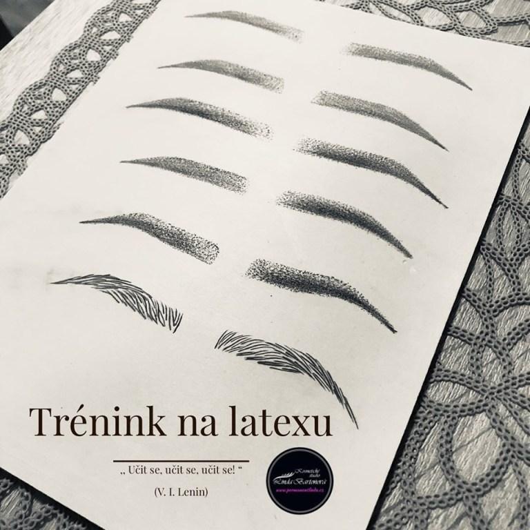 kosmetička stylistka Linda Bartoňová Kosmetické studio permanentní makeup nový jičín powder brows pudrové obočí microblading vláskování