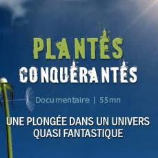 Nature invisible plantes conquerantes