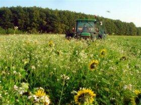 agriculture de conservation