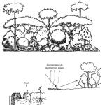 permaculture recueil