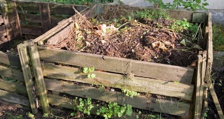 Le Compost – PDFs et autres Documents
