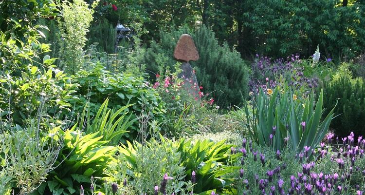 Le Jardin Forêt