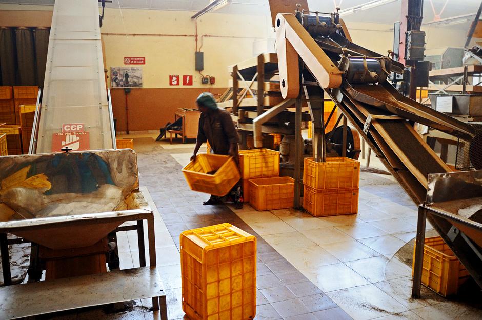 17. Sri Lanka, Nuwara Eliya. Po procesie fermentacji i całkowitym wysuszeniu liści herbata jest już gotowa do spakowania. (Fot. Ania Błażejewska)