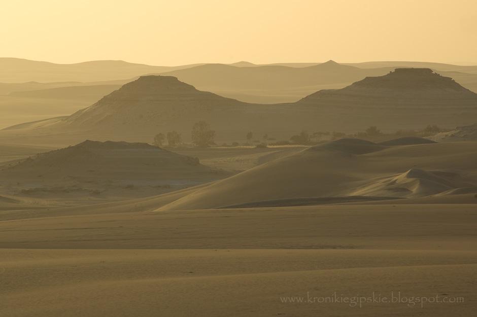 12. EGIPT, Sahara. Bir Wahid – gorące źródło ukryte wśród piasków Sahary. Terytorium Egiptu to w 90 procentach pustynia, ale i tutaj można znaleźć wodę. Żródła najczęściej mają swoje numery i są doskonale znane przez okolicznych mieszkańców. (Fot. Anna Krukowska)
