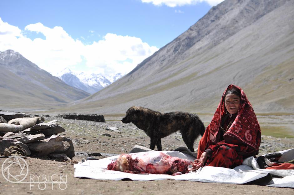 8. AFGANISTAN, prowincja Badachsztan. Wilka wprawdzie nie udało się zastrzelić, ale odzyskano owcę. Tego wieczoru czekało nas mięso - prawdziwy rarytas o tej porze roku. Normalnie owce zabijane są tylko z okazji ważnych wydarzeń, lub w zimie. (Fot. Jakub Rybicki)
