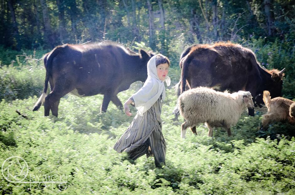 20. AFGANISTAN, prowincja Badachsztan. Pastereczka. W Afganistanie dzieci od małego pomagają swoim rodzicom. (Fot. Jakub Rybicki)