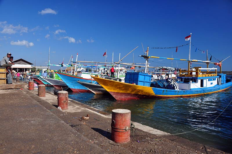 Wyspa Timor w Indonezji, miasto Kupang.