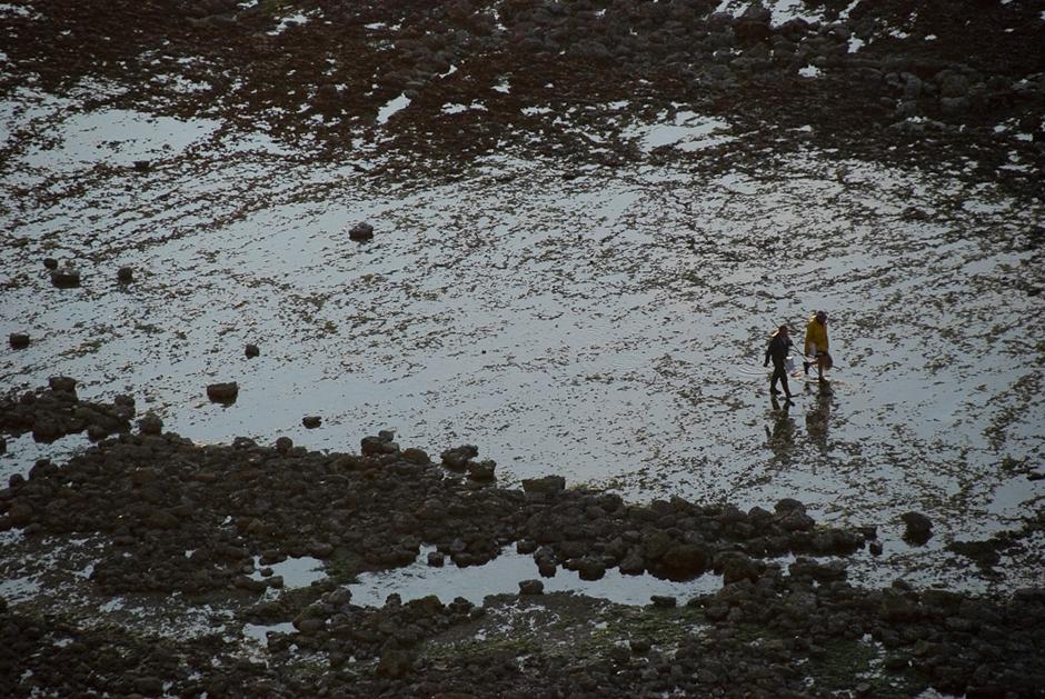 Mieszkańcy Normandii żyją nie tylko z rolnictwa ale i z morza