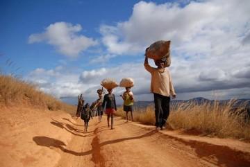 Życie na Madagaskarze