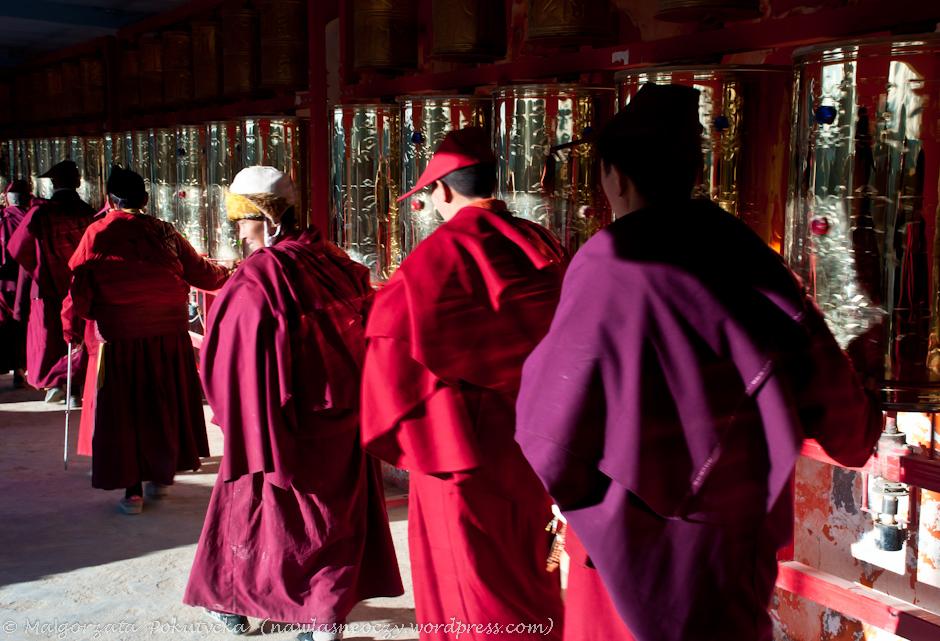 Mnisi i mniszki w buddyjskim instytucie mogą rozmawiać godzinę dziennie.