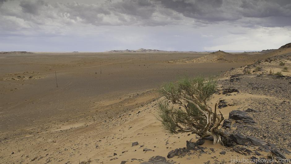 Pustynia Gobi, Mongolia