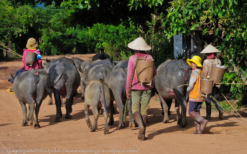 Wietnamczycy po pracy