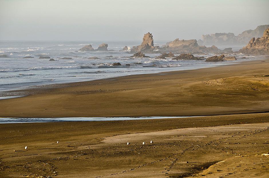 plaża w pobliżu Woodpecker Bay