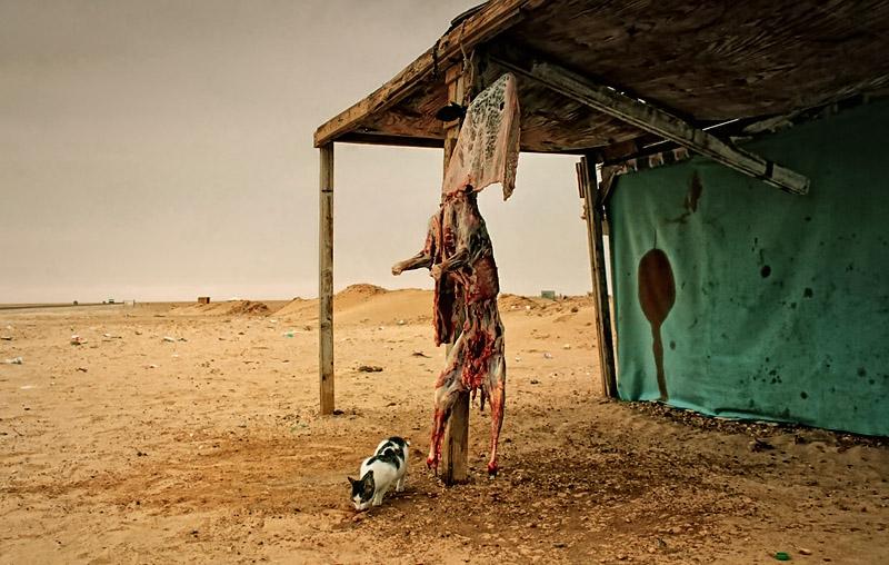 Mauretania - mięso suszące się na słońcu