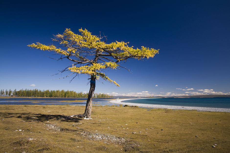 Turystyczna strona Mongolii