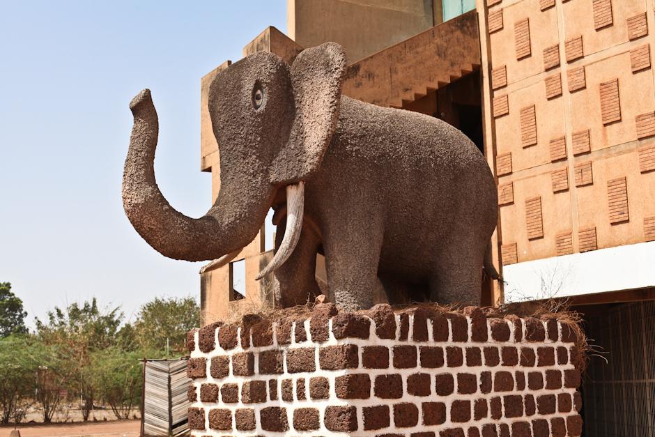 Słoń w Burkina Faso