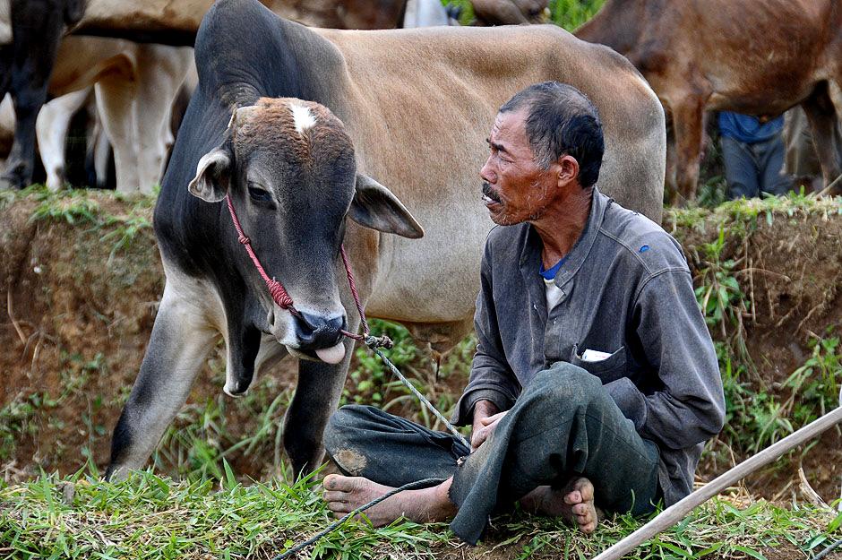Podróż na Sumatrę - zdjęcia
