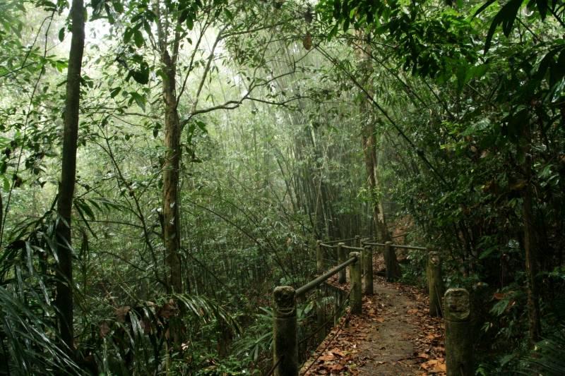 Khao Sok - park narodowy w Tajlandii