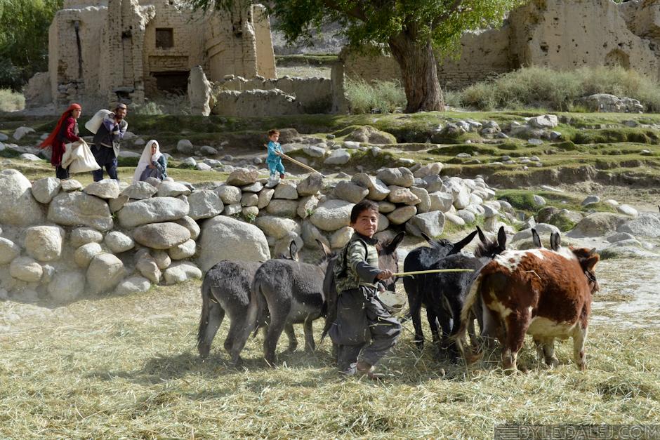 Rolnictwo w Korytarzu Wachańskim