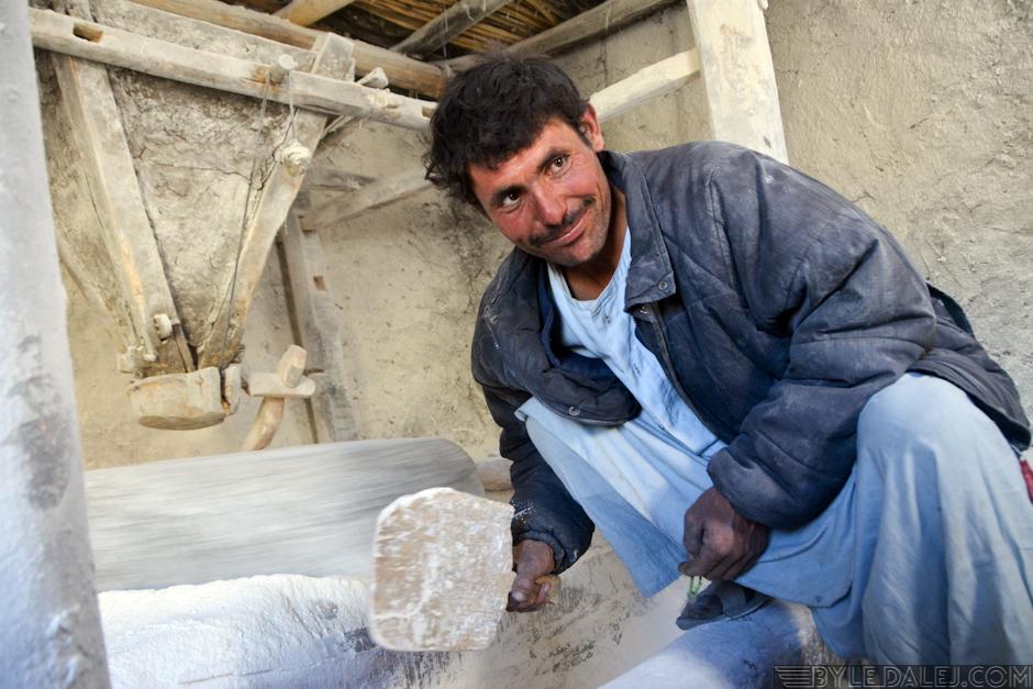 Piekarz afgański - foto