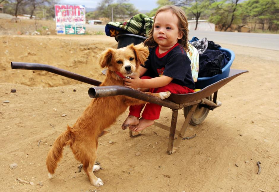 Peru - dziecko i pies