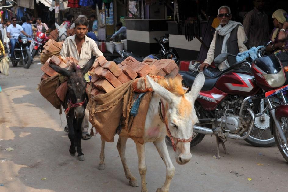 Gwalior w Indiach