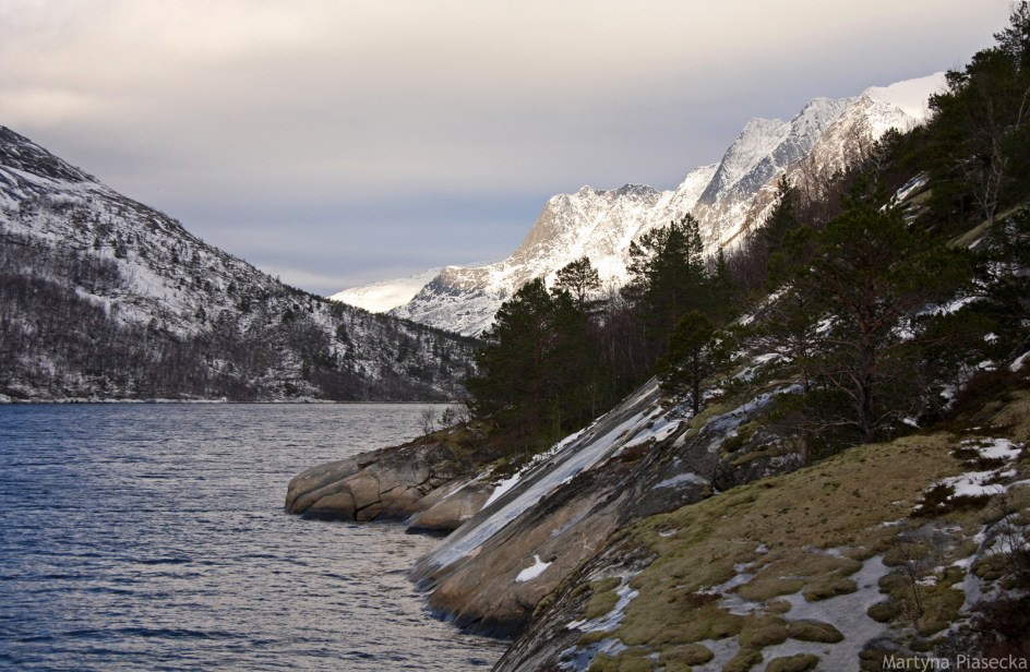NORWEGIA, Mørsvikbotn - zdjęcia z podróży