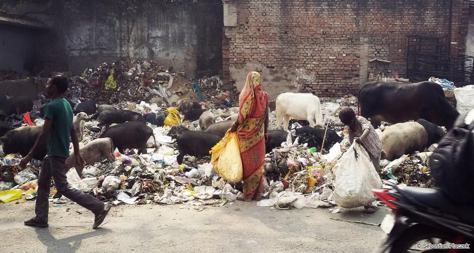 Indie, śmieci na ulicach Kanpus. Foto - Sebastian Placzek