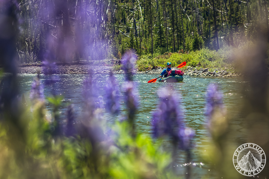 MIke Fiebig paddles past Lupine