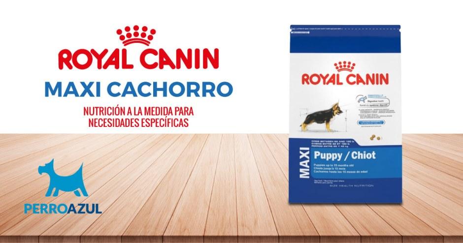 Croquetas para Perro Royal Canin Maxi Cachorro