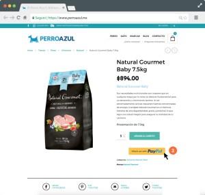Da click al botón de Check out with PayPal